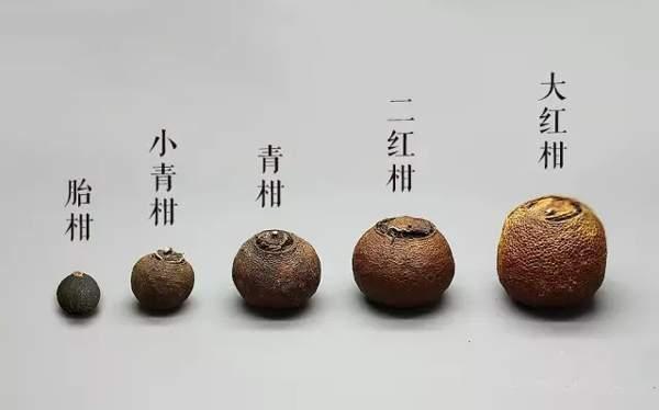 帶你了解什麼是小青柑普洱茶?