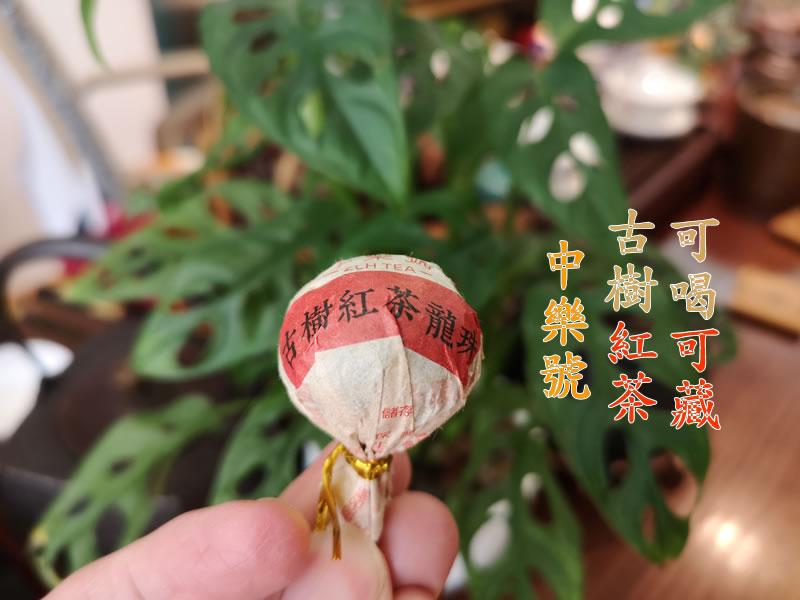 古樹<a href=https://zlhtea.com/black_tea/gs target=_blank class=infotextkey>紅茶</a> 2020古樹<a href=https://zlhtea.com/black_tea/gs target=_blank class=infotextkey>紅茶</a>龍珠 8克/粒